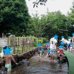 ジャブジャブ池|幼児のおすすめ水遊びスポット(東京・神奈川)
