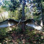 かつやまディノパーク(福井県)|ジュラシックパークのような恐竜の世界に感動
