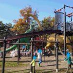 かつやま恐竜の森(福井県)|丸一日では遊びきれない恐竜好きの楽園